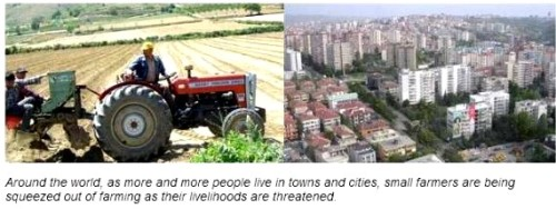 farming land cities